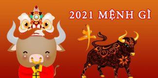 2021 mệnh gì