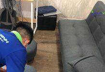 Vệ sinh ghế Sofa giá rẻ
