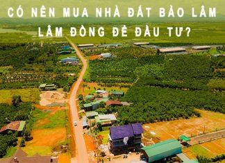 Có nên mua đất Bảo Lâm, Lâm Đồng