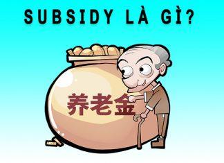 Subsidy là gì?